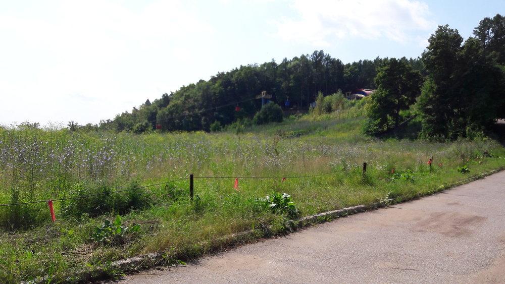 Pohled ve směru od provozní budovy sportovního areálu khorní stanici lanové dráhy. Loni snesený skokanský můstek byl někde u levého okraje snímku, přibližně uprostřed.