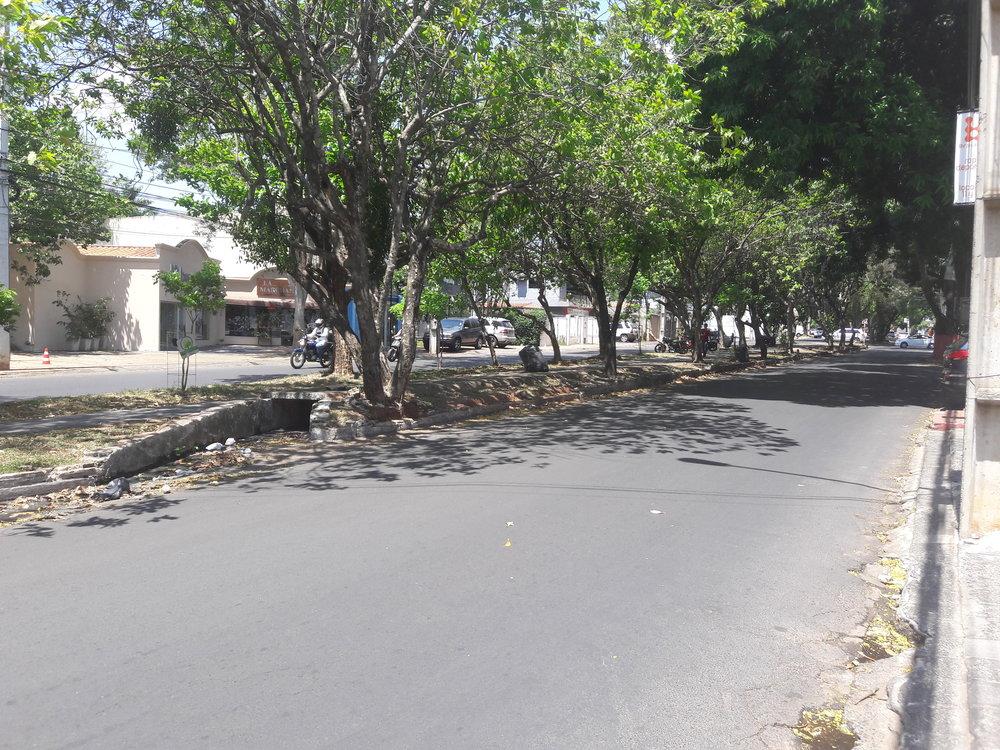 Snímky ztřídy Guido Boggiani. Jak vidno, namístě trati vznikla cyklostezka.