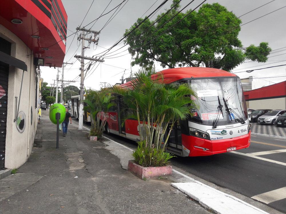 Trolejbus nasnímku se při příjezdu od centra schovává za exotickou bylinou, následně zahne doleva a dojede naterminál Vila Carrão.