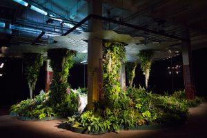 Když se z podzemky stane park – Low Line