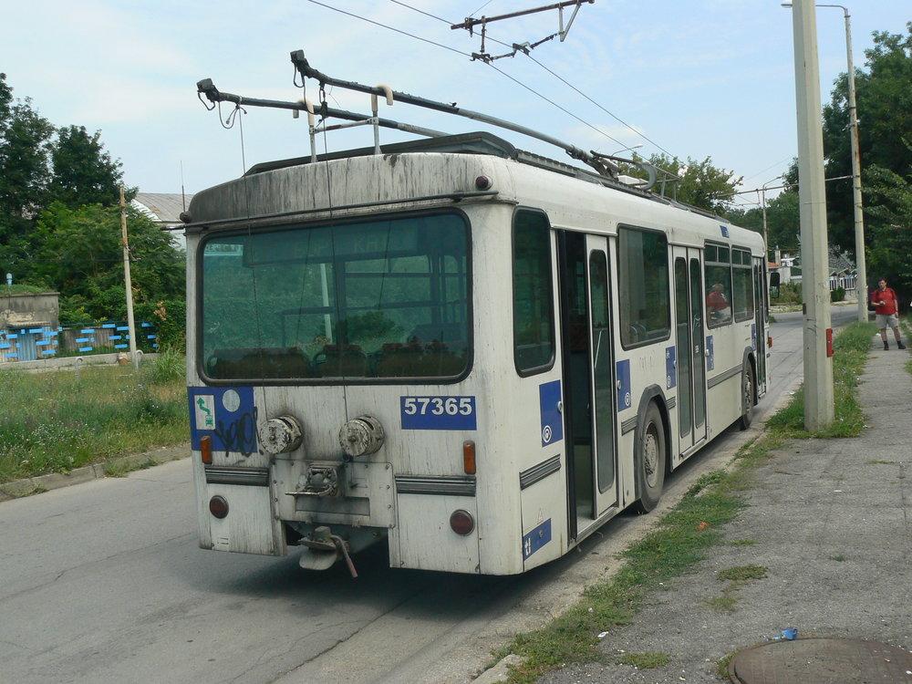 P1050563.jpg